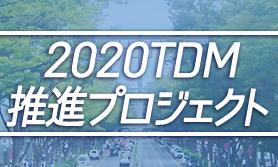 2020TDMシンボル